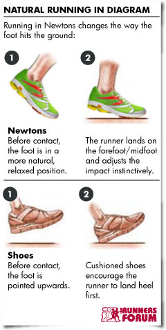 Newton Running: Transitioning to Natural Running Form and Shoes ...