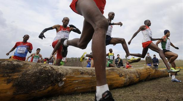 Senior men's race at the 2010 IAAF World Cross-Country Championships in Poland.